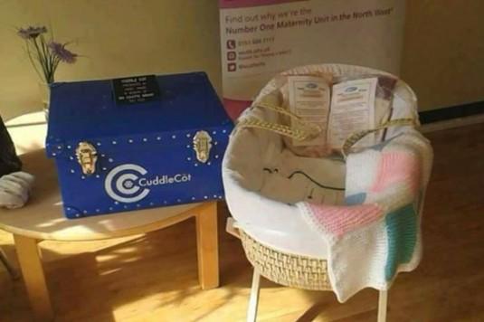 cuddle cot